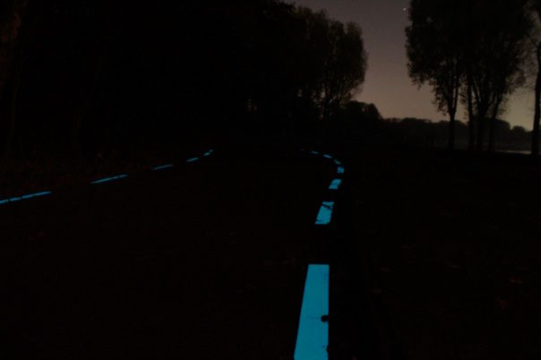 Glow-in-the-dark fietspad in het Kralingse Bos